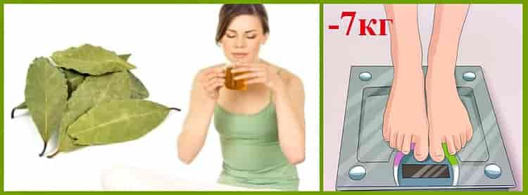 Как пить лавровый лист чтобы вызвать месячные