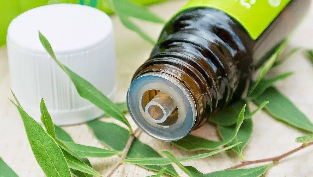 Свойства и применение эфирного масла чайного дерева для лица