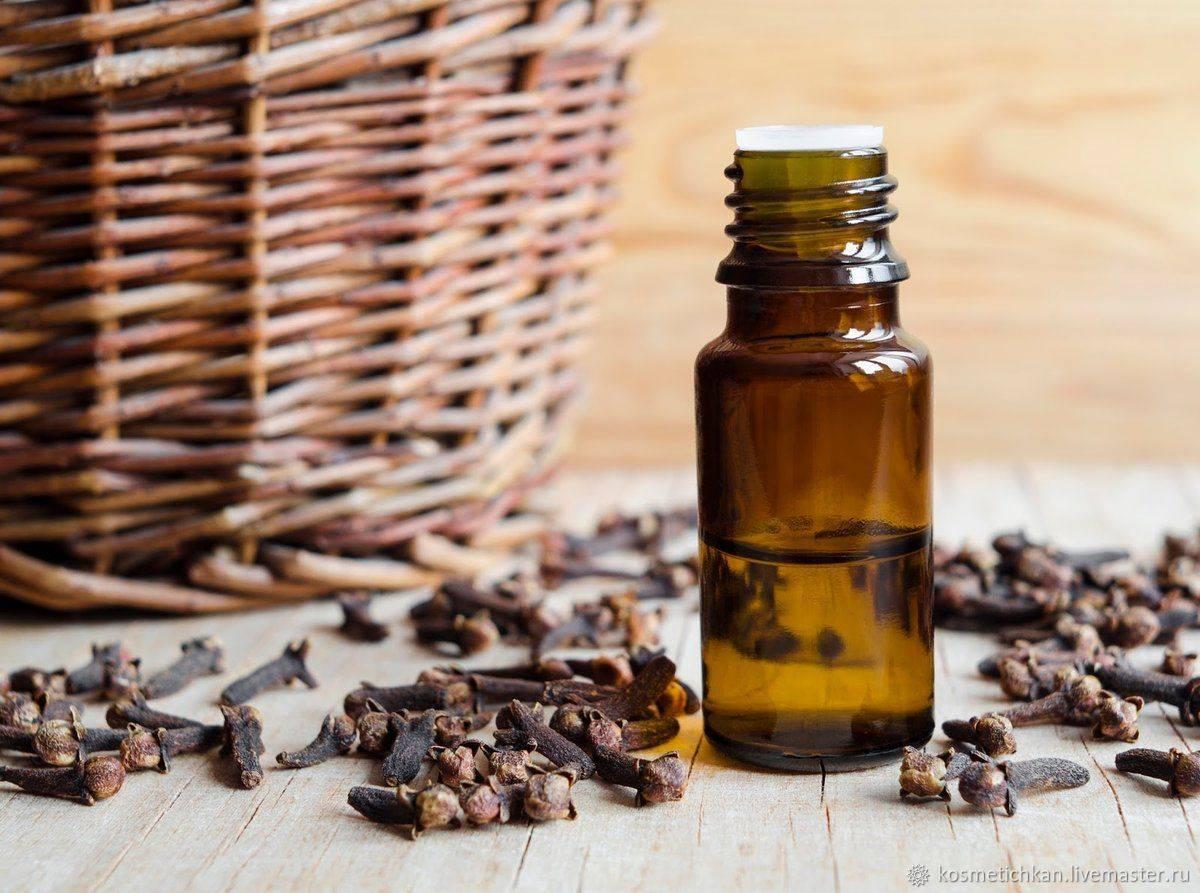 Эфирное масло гвоздики: уникальные свойства эссенции и способы применения