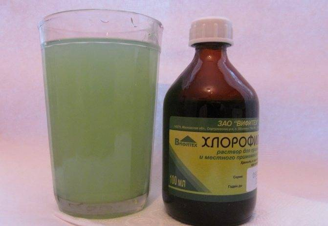 Как разводить хлорофиллипт для полоскания десен