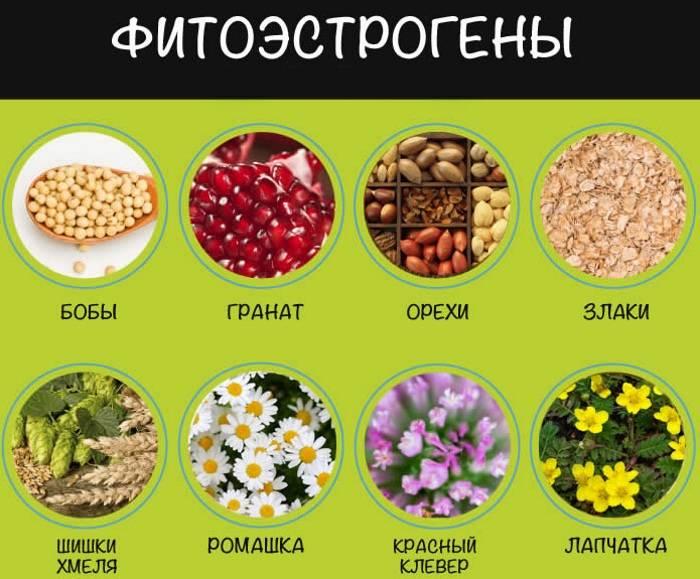 Народные средства при менопаузе – 10 полезных рецептов