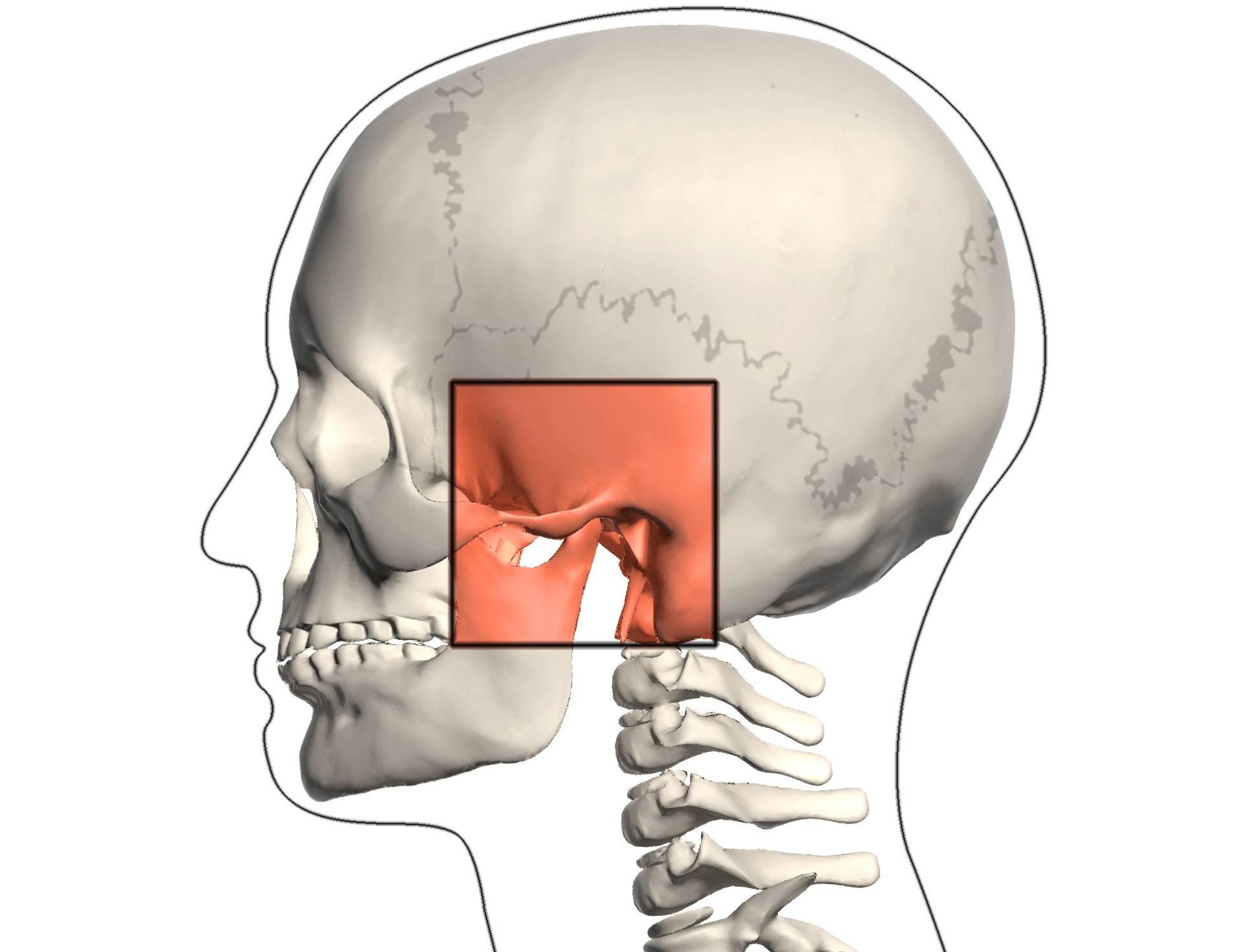 Щелкает челюсть при открытии рта: от чего это происходит и как избавиться?