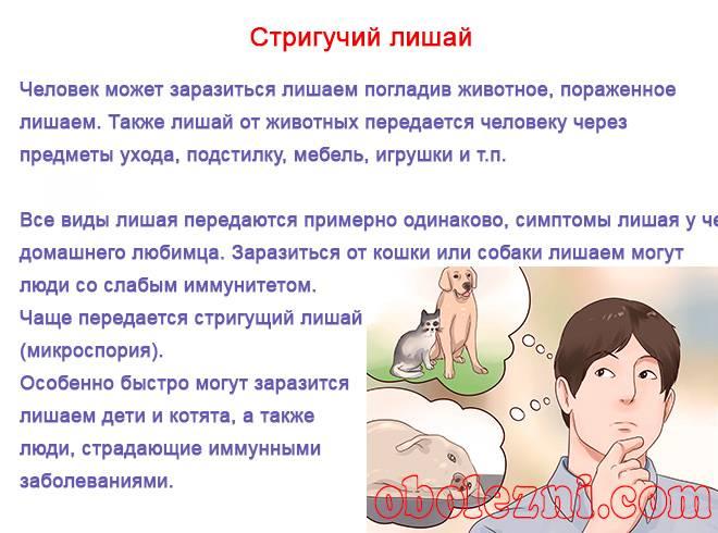 Пародонтоз как передается