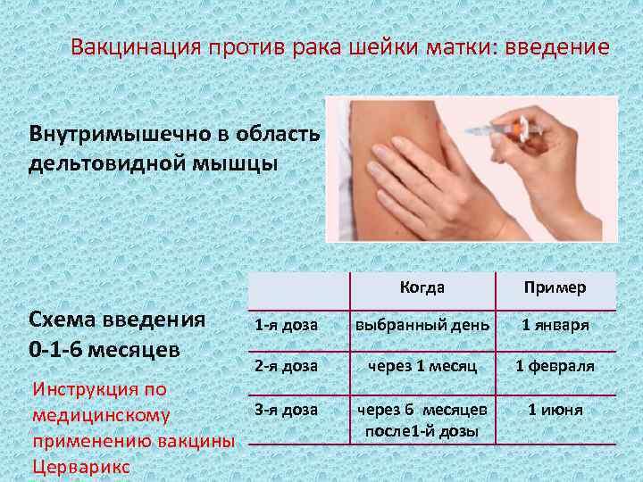 Вакцинация от рака шейки матки и онкологии других женских органов – когда и как делают прививку?