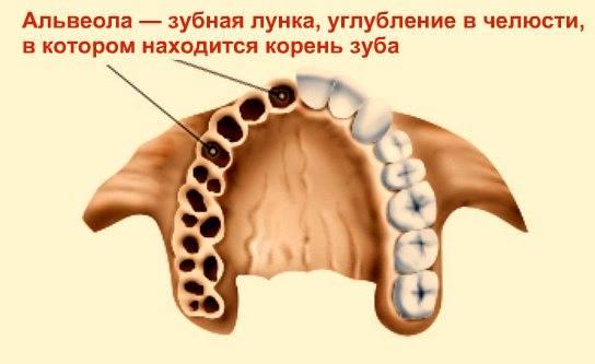 Нужно ли уточнять у специалистов: сколько идет кровь после удаления зуба?