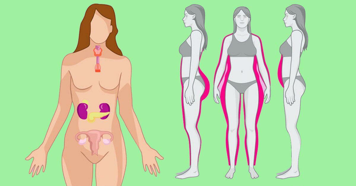 Причины гормонального сбоя и возможно ли лечение народными средствами?