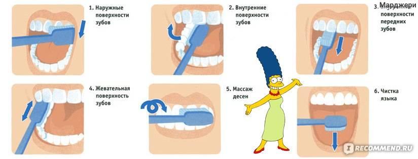 Как правильно чистить зубы: самая подробная инструкция