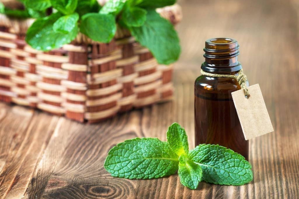 Применение эфирного масла пачули для кожи лица