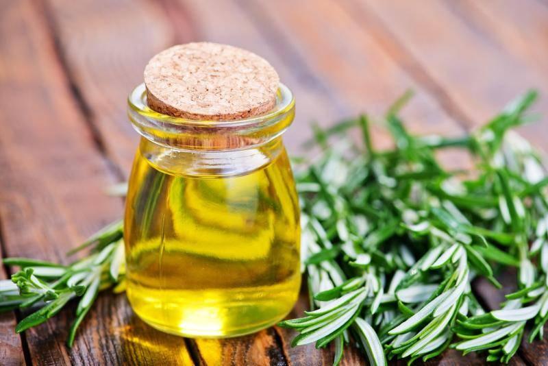 Масло розмарина: польза для волос, лица и здоровья
