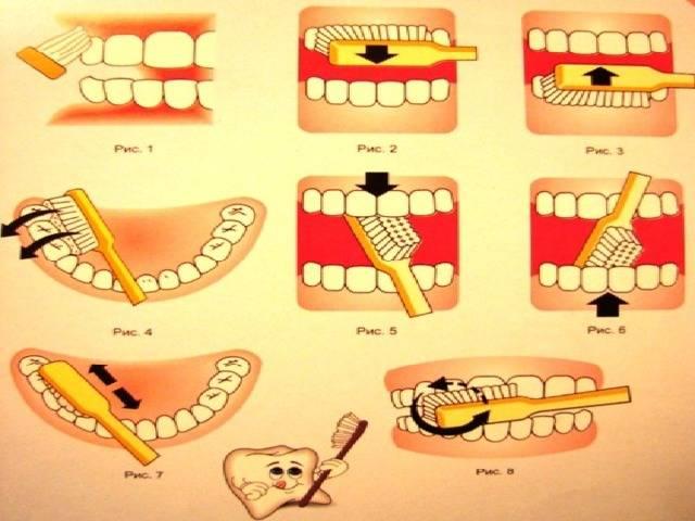 Правила гигиены полости рта: рекомендации ведущих стоматологов