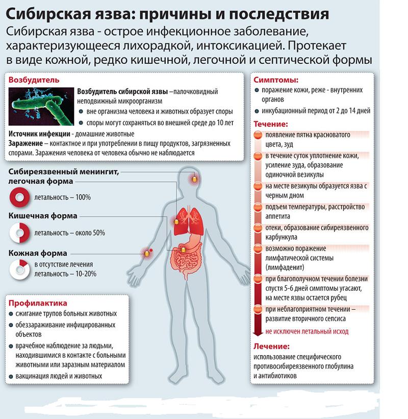 Симптомы и диагностика отравления мышьяком