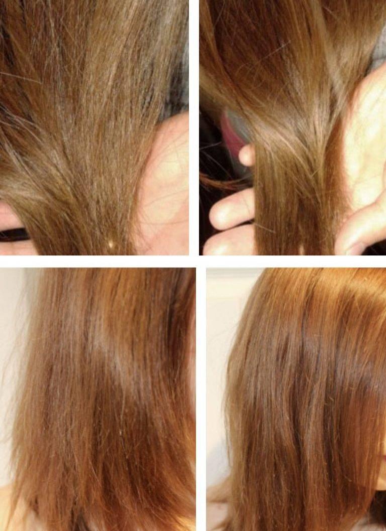 Нерафинированное подсолнечное масло для волос