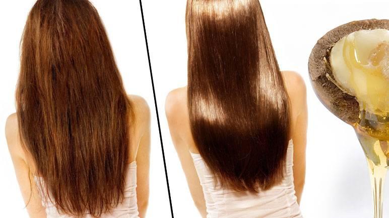 Аргановое масло для волос: рецепты с «жидким золотом»