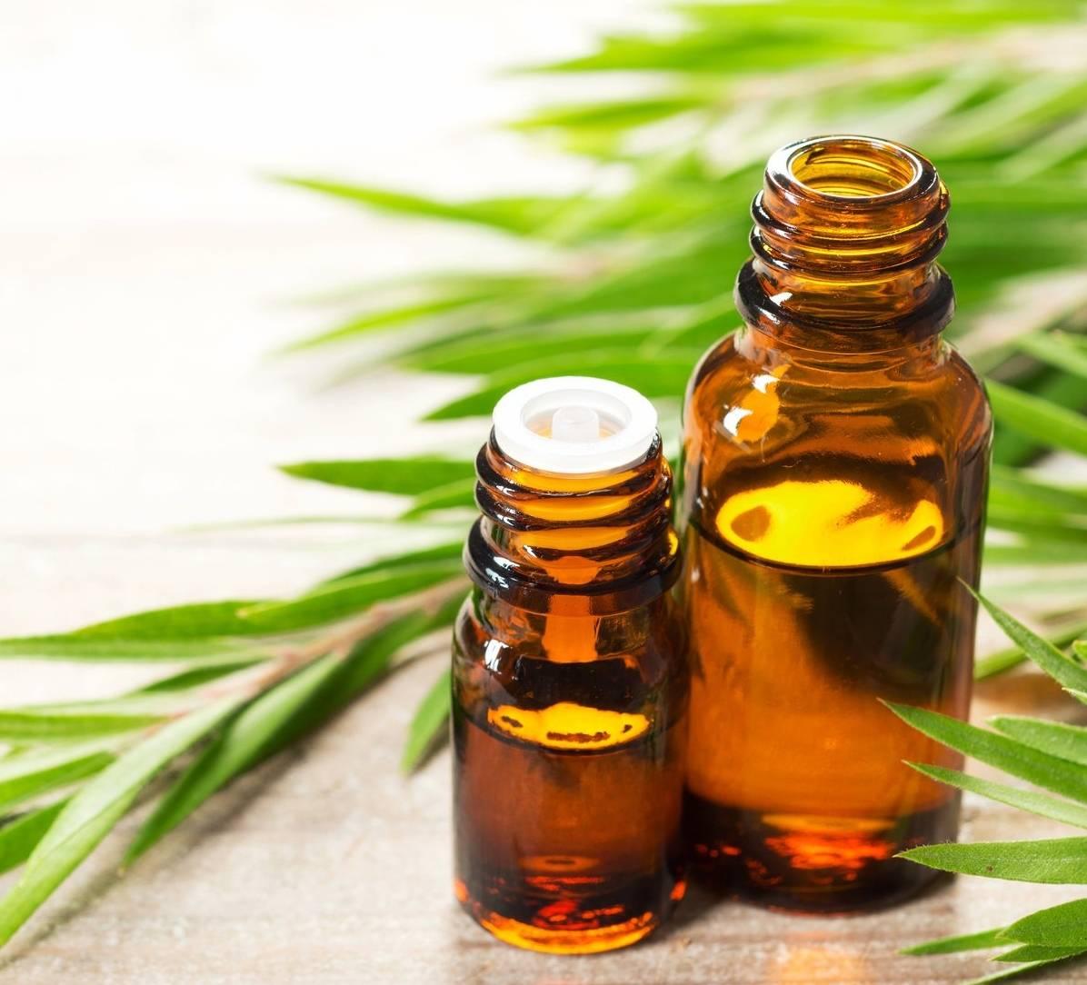 Особенности применения масла чайного дерева