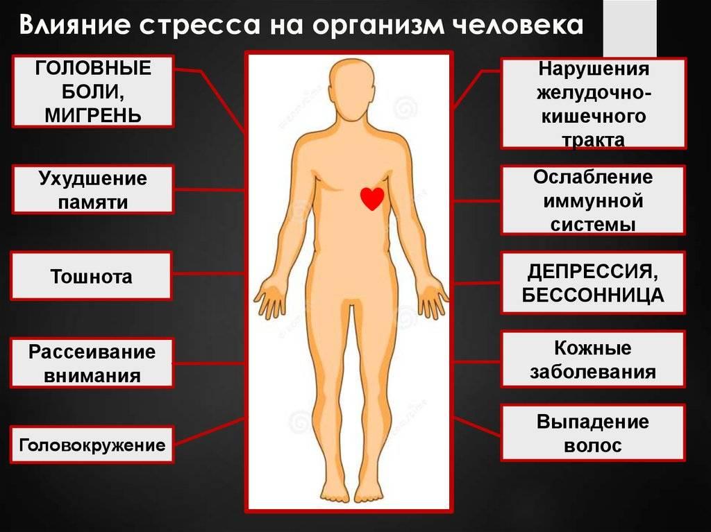 Недостаток железа в организме, почему оно не усваивается, как повысить