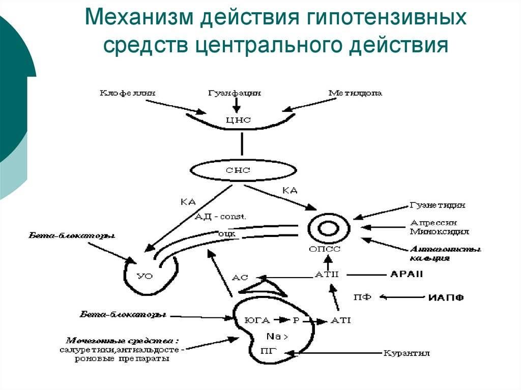 Цель т уколы: инструкция по применению, показания