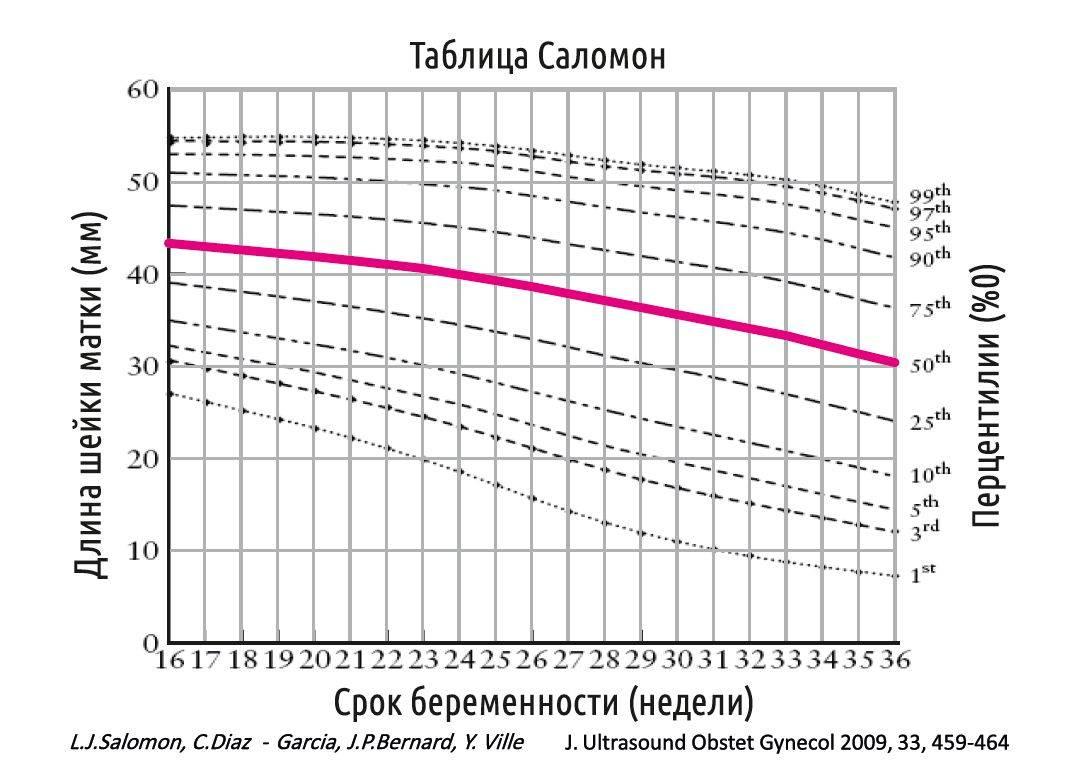 Длина шейки матки при беременности таблица