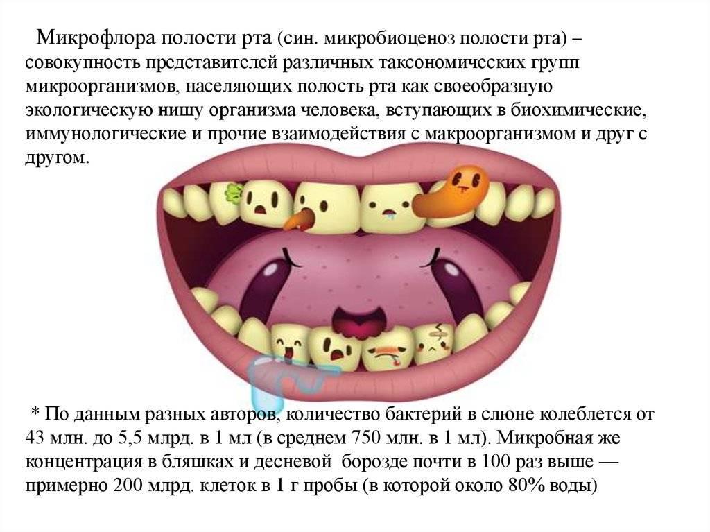 Состав патогенной микрофлоры полости рта и ее роль