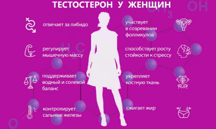 Тестостерон у женщин: норма, причины и последствия отклонений