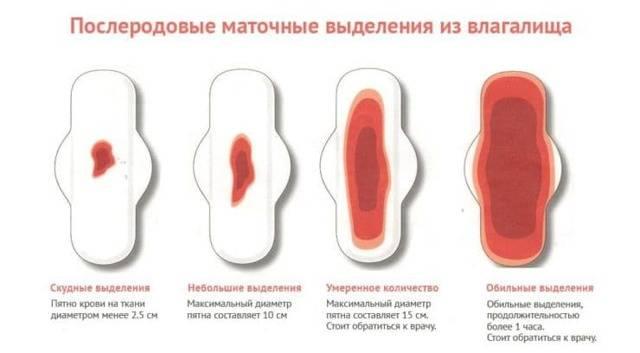 Выделения после родов: отклонения и норма в характеристиках