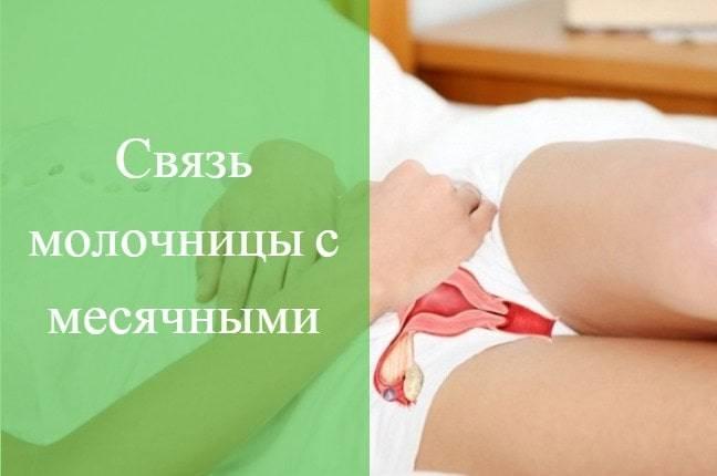 Может ли молочница быть признаком беременности до задержки, после овуляции