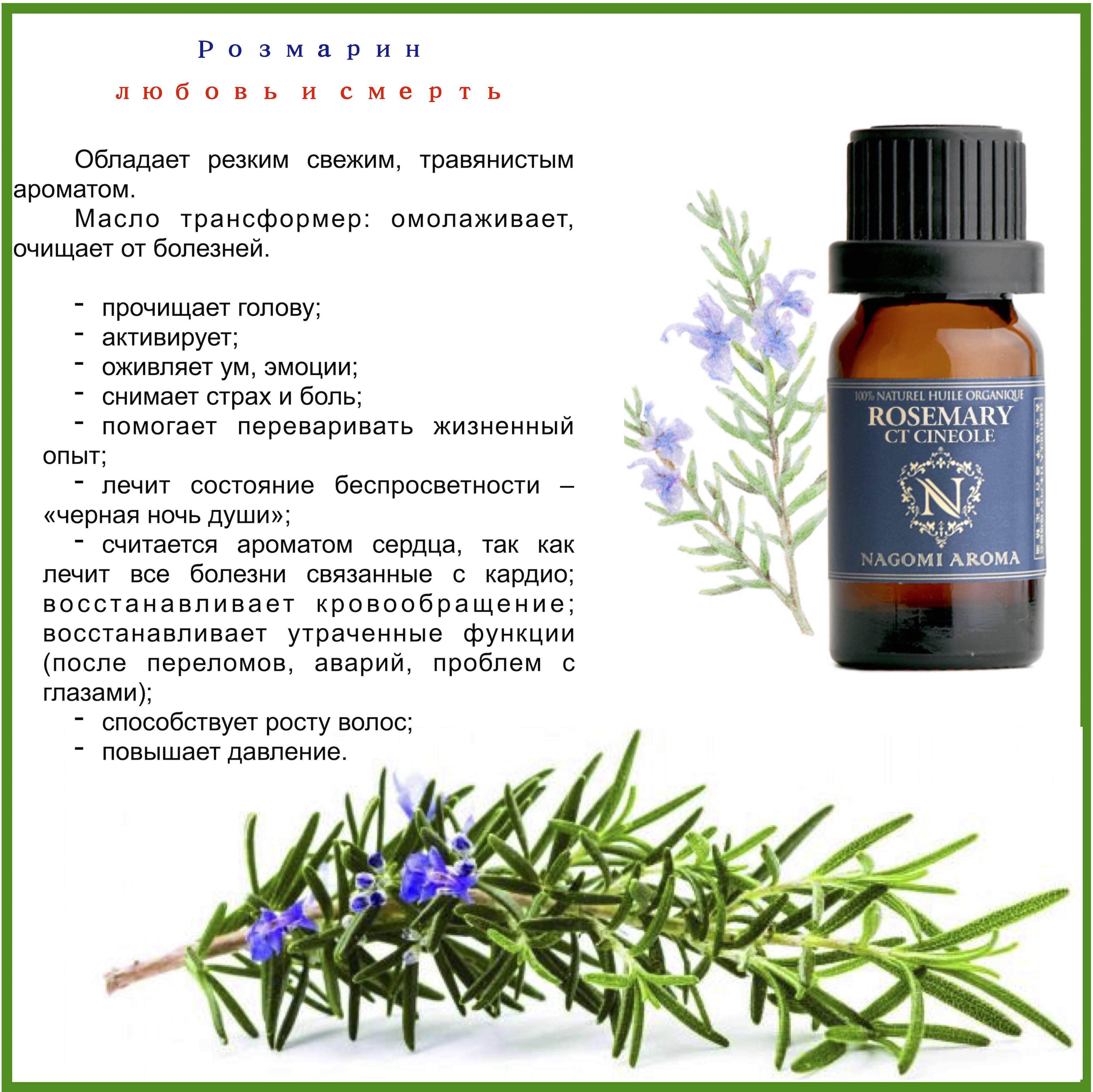 Рецепты применения эфирного масла розмарина для ухода за волосами