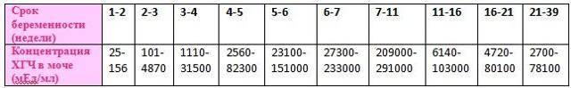 Хгч в моче — что это, уровень по дням от зачатия (таблица)