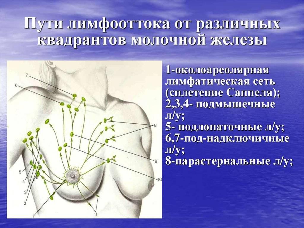 Что такое аксиллярная лимфаденопатия?
