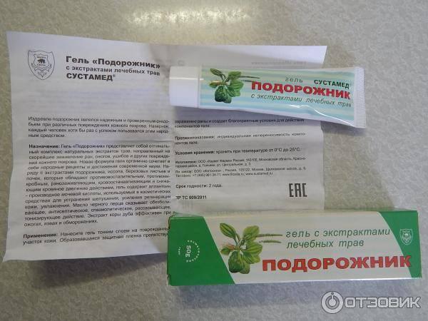 Подорожник семена лечебные свойства от бесплодия