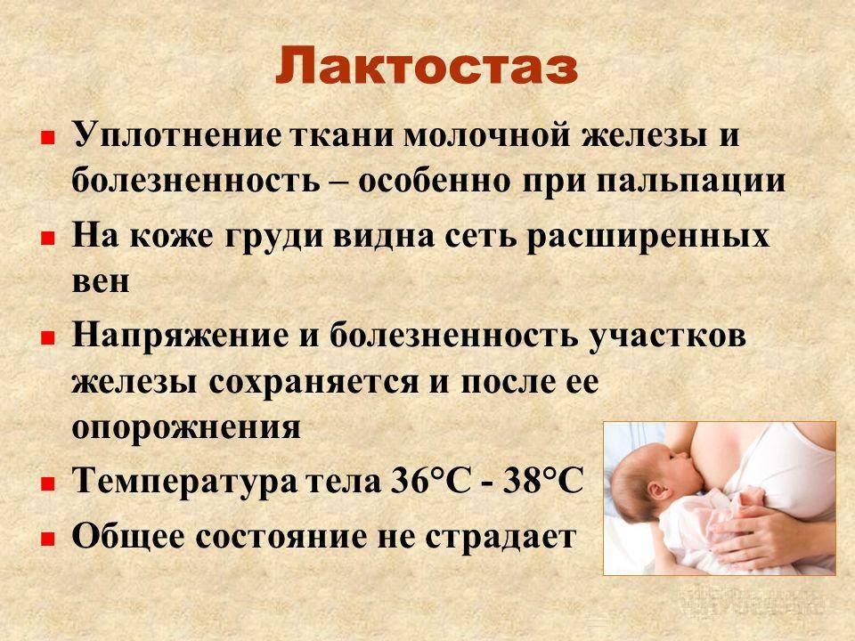 Лечение лактостаза народными средствами и прекращение лактации