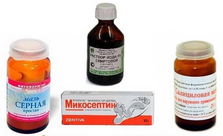Стригущий лишай у человека: заразность, симптомы, лечение