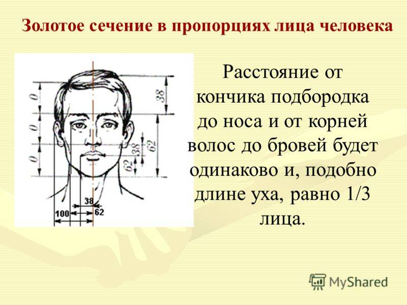 Рисуем лицо человека
