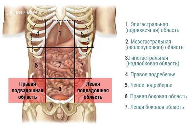 Болит низ живота у женщины справа, слева, после акта, при беременности. причины