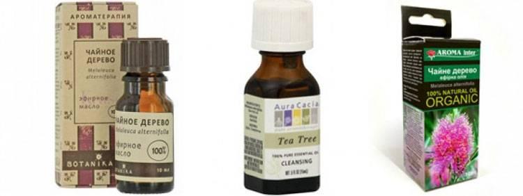 Ногти без грибка. как избавиться от инфекции с помощью масла чайного дерева?