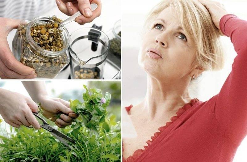 Народные средства при климаксе для лечения приливов и симптомов – рецепты отваров, чаев и настоек