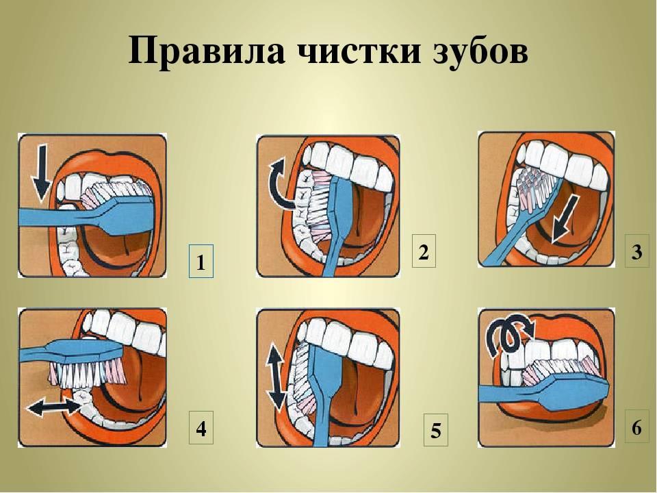 Как правильно ухаживать за зубами и что для этого необходимо?