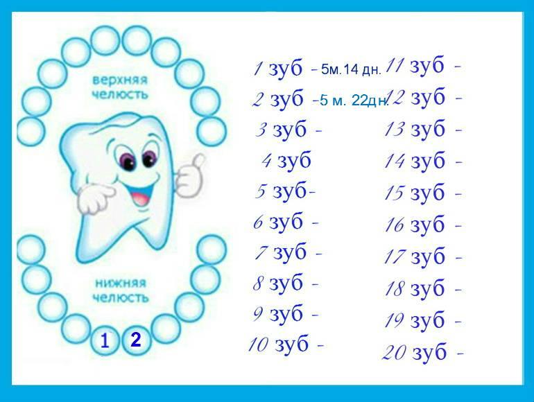 Лезут зубки у ребенка: симптомы, как помочь ребенку и что можно сделать