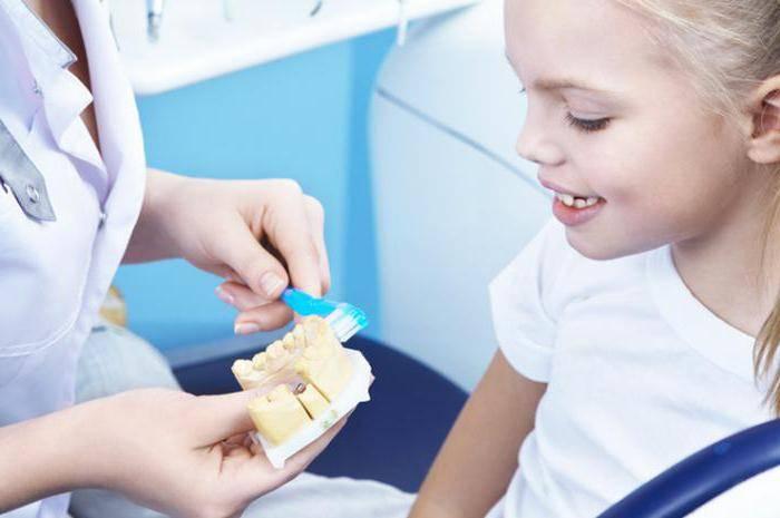 Чем стоматолог отличается от ортодонта? разница между ортодонтом и ортопедом