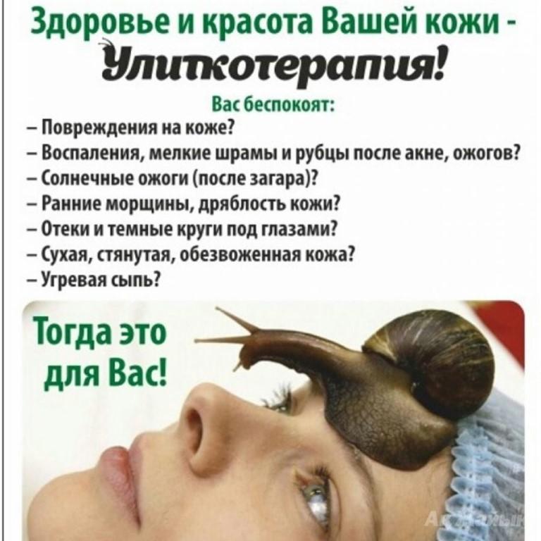Улитки помогут избавиться от морщин на лице хитрости и секреты улиткотерапии