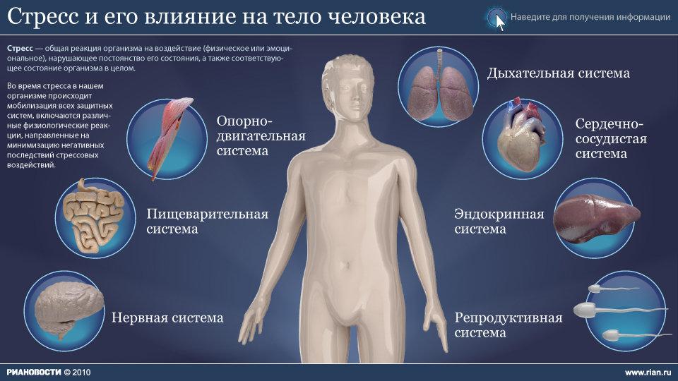 Что такое аутоиммунные заболевания простыми словами и список болезней