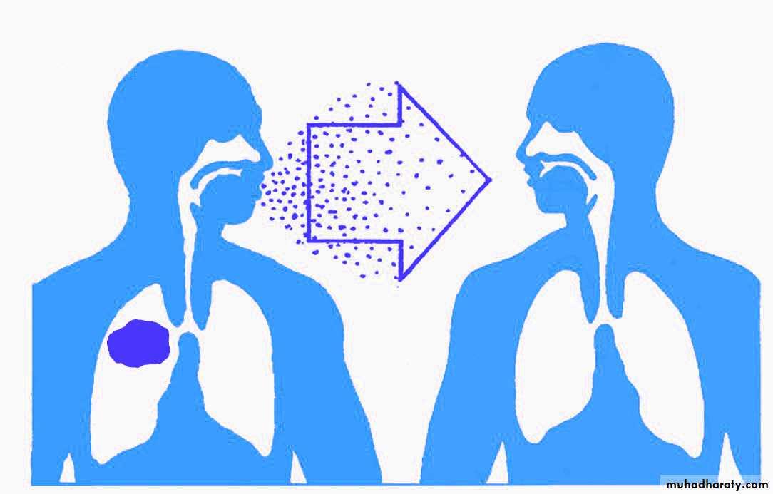 """Поцелуй со вкусом """"стоматита"""": заразно ли заболевание и как оно передается"""