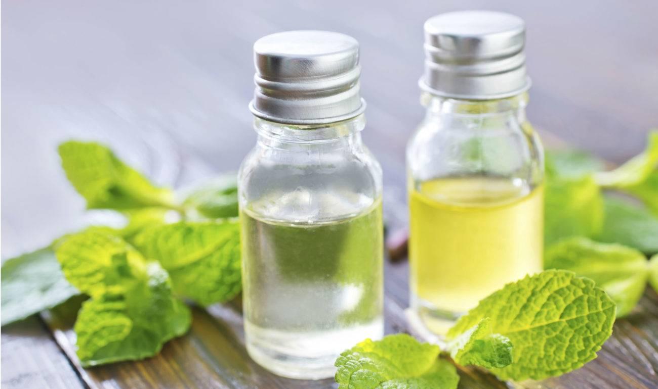 Эфирное масло мяты: свойства и способы применения