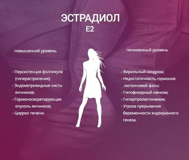 Гормон эстрадиол у женщин: норма, причины отклонения от нормы