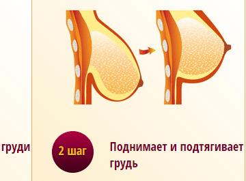 Во сколько лет начинает расти грудь: признаки и стадии