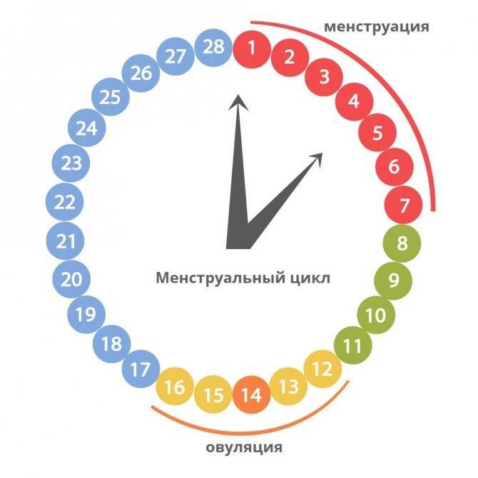 Нарушения менструального цикла: причины