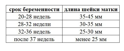 Длина шейки матки при беременности на 17 неделе