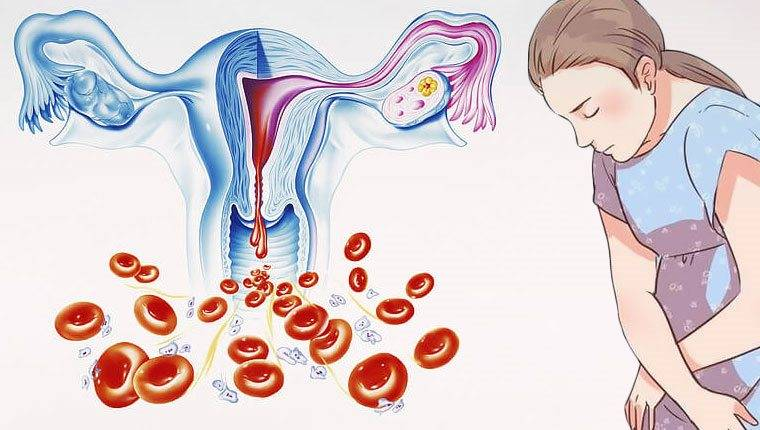 Менструация: сколько крови теряет женщина при месячных