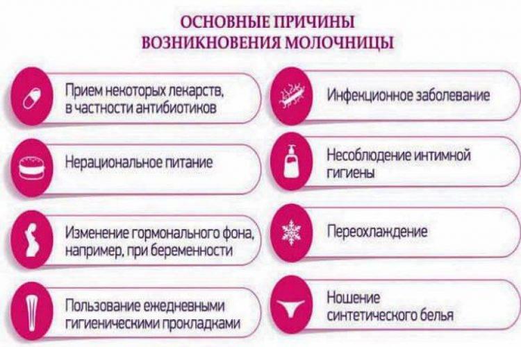 Молочница (вагинальный кандидоз) : первые признаки и лечение у женщин