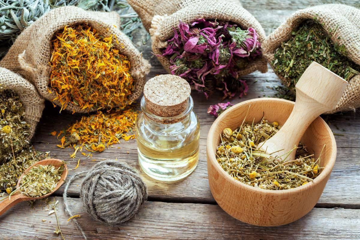 12 хитрых травок от мастопатии: советы маммолога и фитотерапевта