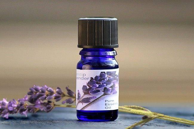 Лавандовое масло: состав, полезные свойства и применение, отзывы